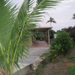Отель Golden Palms Retreat Фиджи, Вити-Леву - отзывы, цены и фото номеров - забронировать отель Golden Palms Retreat онлайн фото 5