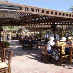 Отель Palmera Azur Resort гостиничный бар