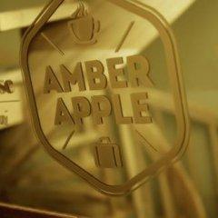 Отель Amber Apple Guesthouse Литва, Вильнюс - отзывы, цены и фото номеров - забронировать отель Amber Apple Guesthouse онлайн развлечения
