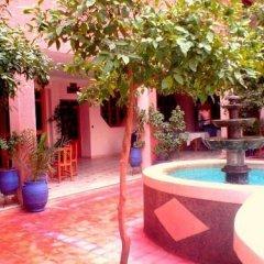 Отель Nadia Марокко, Уарзазат - отзывы, цены и фото номеров - забронировать отель Nadia онлайн фото 2