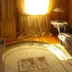 Hotel Traktir удобства в номере