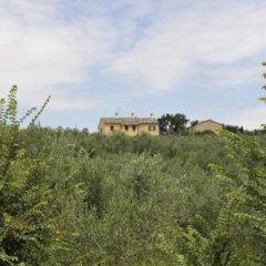 Отель Agriturismo Al Crepuscolo Италия, Реканати - отзывы, цены и фото номеров - забронировать отель Agriturismo Al Crepuscolo онлайн фото 8