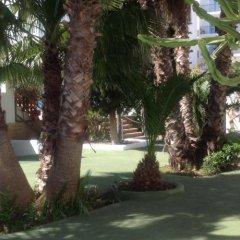 Отель Hostal Tarba фото 3