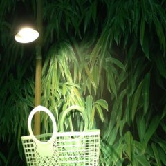 Green Garden Hostel спа
