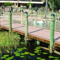 Отель Bryan's Spanish Cove by Diamond Resorts спортивное сооружение