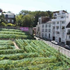 Апартаменты Montmartre Apartments Matisse Париж приотельная территория