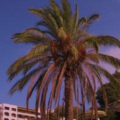 Отель Romantza Mare пляж фото 2