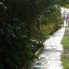 Гостиница Надежда в Сочи отзывы, цены и фото номеров - забронировать гостиницу Надежда онлайн фото 4