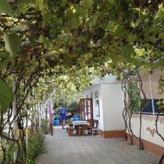 Гостиница Надежда в Сочи отзывы, цены и фото номеров - забронировать гостиницу Надежда онлайн фото 2