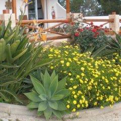 Отель Monte da Bravura Green Resort фото 2