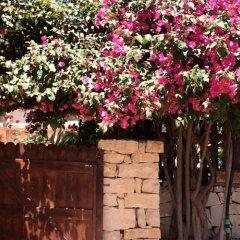 Отель B&B Dolce Casa Италия, Сиракуза - отзывы, цены и фото номеров - забронировать отель B&B Dolce Casa онлайн фото 7