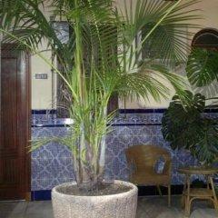 Отель Nova Centro Испания, Херес-де-ла-Фронтера - отзывы, цены и фото номеров - забронировать отель Nova Centro онлайн фото 4