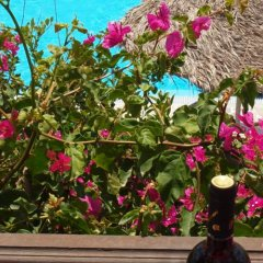 Отель Holiday Beach Resort Греция, Остров Санторини - отзывы, цены и фото номеров - забронировать отель Holiday Beach Resort онлайн пляж фото 2