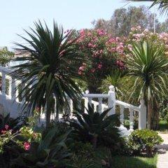 Отель Dar Nilam Марокко, Танжер - отзывы, цены и фото номеров - забронировать отель Dar Nilam онлайн фото 3