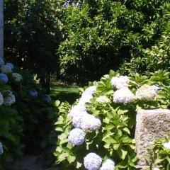 Отель Casa Das Vendas Португалия, Марку-ди-Канавезиш - отзывы, цены и фото номеров - забронировать отель Casa Das Vendas онлайн фото 3