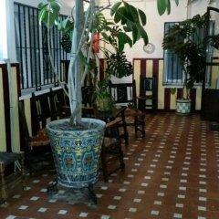 Отель Hostal Atenas питание