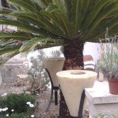 Отель Villa Bellabé Франция, Ницца - отзывы, цены и фото номеров - забронировать отель Villa Bellabé онлайн фото 7