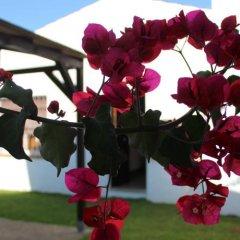 Отель Hacienda los Majadales Испания, Кониль-де-ла-Фронтера - отзывы, цены и фото номеров - забронировать отель Hacienda los Majadales онлайн интерьер отеля фото 2