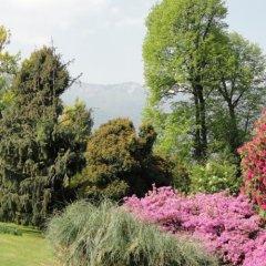 Отель Delle Monache Италия, Вербания - отзывы, цены и фото номеров - забронировать отель Delle Monache онлайн фото 4