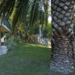 Отель Villa Yannis Греция, Корфу - отзывы, цены и фото номеров - забронировать отель Villa Yannis онлайн фото 9