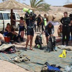 Отель Red Sea Dive Center фото 3