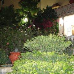 Отель Amra Palace International Иордания, Вади-Муса - отзывы, цены и фото номеров - забронировать отель Amra Palace International онлайн фото 8