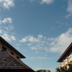 Отель Bonkai Resort Таиланд, Паттайя - 1 отзыв об отеле, цены и фото номеров - забронировать отель Bonkai Resort онлайн фото 7