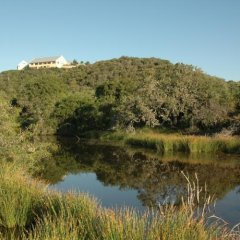 Отель Kududu Guest House Южная Африка, Аддо - отзывы, цены и фото номеров - забронировать отель Kududu Guest House онлайн приотельная территория фото 2