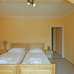 Отель Apartmany Victoria Чехия, Карловы Вары - отзывы, цены и фото номеров - забронировать отель Apartmany Victoria онлайн комната для гостей фото 5