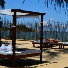 Отель Coco Villa Boutique Resort Шри-Ланка, Берувела - отзывы, цены и фото номеров - забронировать отель Coco Villa Boutique Resort онлайн фото 3
