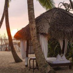 Отель Coco Villa Boutique Resort Шри-Ланка, Берувела - отзывы, цены и фото номеров - забронировать отель Coco Villa Boutique Resort онлайн фото 10
