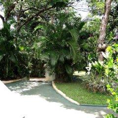 Отель Star Holiday Resort Хиккадува фото 17