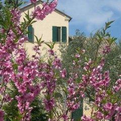 Отель I Ciliegi Озимо фото 4