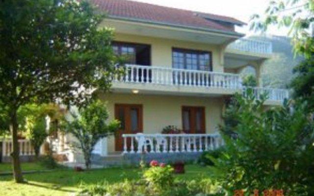 Apartmani Petkovic
