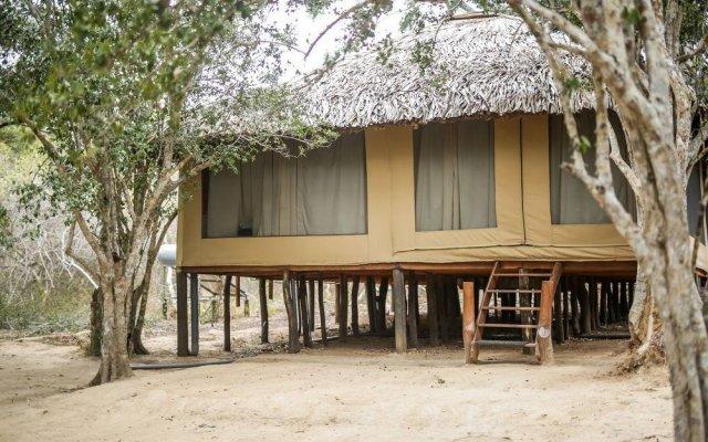 Отель Yala Safari Camping Шри-Ланка, Катарагама - отзывы, цены и фото номеров - забронировать отель Yala Safari Camping онлайн вид на фасад