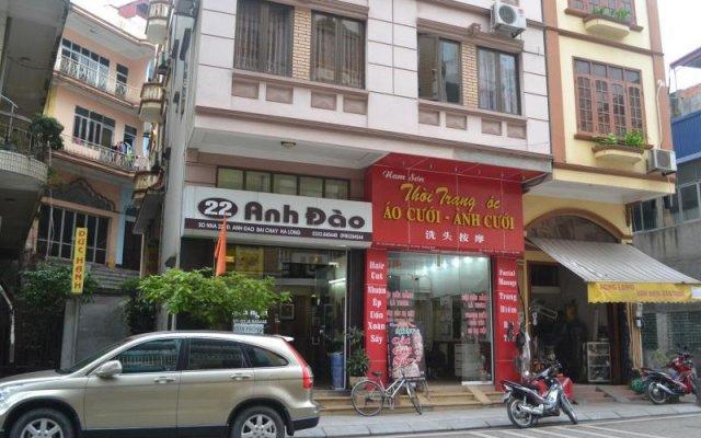 22 Anh Dao Hotel Халонг вид на фасад
