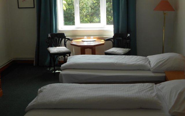Отель Vila Josefina Чехия, Прага - отзывы, цены и фото номеров - забронировать отель Vila Josefina онлайн комната для гостей