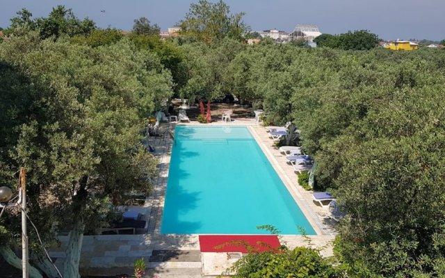 Отель Oliva Pansiyon бассейн