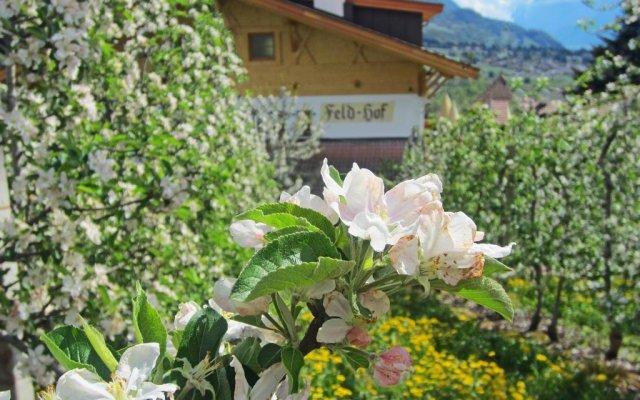 Отель Feld-hof Италия, Горнолыжный курорт Ортлер - отзывы, цены и фото номеров - забронировать отель Feld-hof онлайн вид на фасад