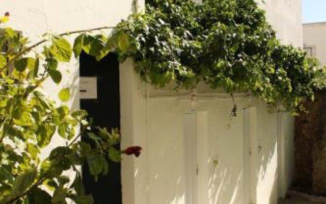 Le Penguin Hostel вид на фасад