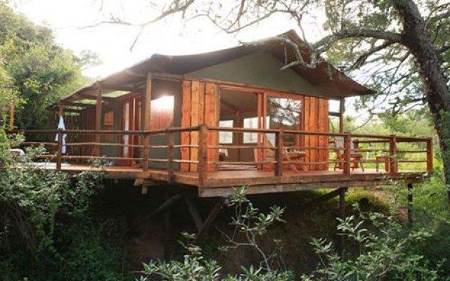 Addo Elephant Back Safaris And Lodge