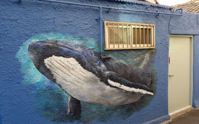 Отель Jinho's Black Whale Guesthouse & Bar вид на фасад