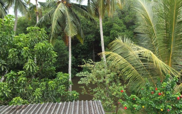 Отель Iruwi Шри-Ланка, Берувела - отзывы, цены и фото номеров - забронировать отель Iruwi онлайн приотельная территория