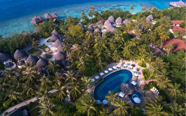 Bandos Maldives in Bandos Island, Maldives from 192$, photos, reviews - zenhotels.com pool