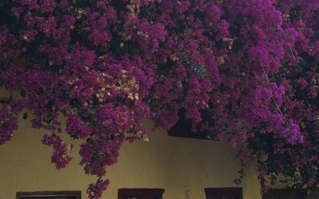 Sevil Hotel Турция, Сиде - отзывы, цены и фото номеров - забронировать отель Sevil Hotel онлайн вид на фасад