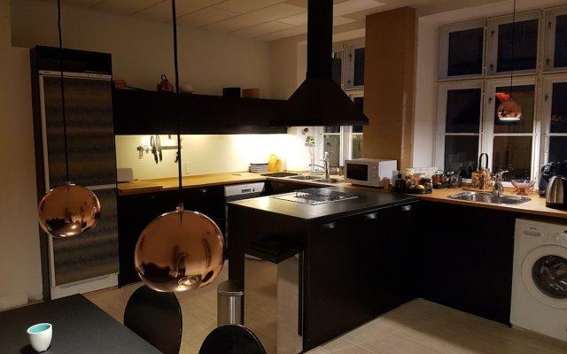 Апартаменты Classic Copenhagen City Apartment Копенгаген в номере