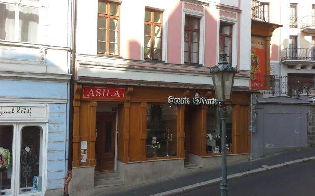 Отель Pension Asila Чехия, Карловы Вары - отзывы, цены и фото номеров - забронировать отель Pension Asila онлайн вид на фасад