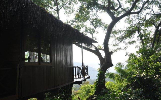 Ella Jungle Inn