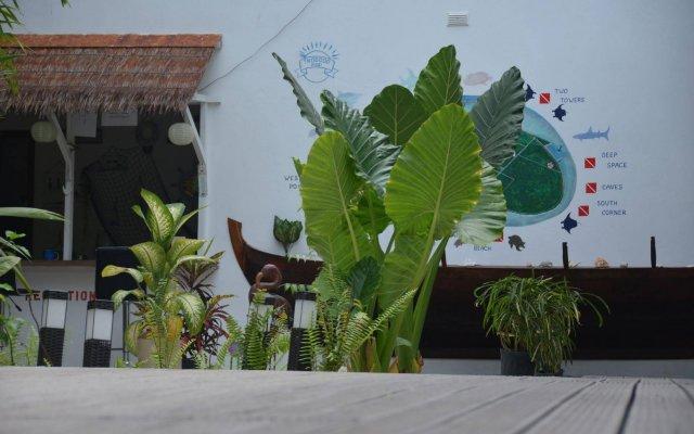 Отель Dive Villa Thoddoo Мальдивы, Атолл Алиф-Алиф - отзывы, цены и фото номеров - забронировать отель Dive Villa Thoddoo онлайн вид на фасад
