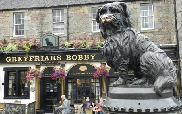 Апартаменты Greyfriars Bobby Home View Apartment - OLD Town Эдинбург